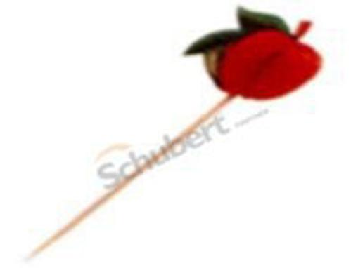 Obrázek z Bodec dřevěný hnědý na ovoce 17,5 cm, 1000 ks